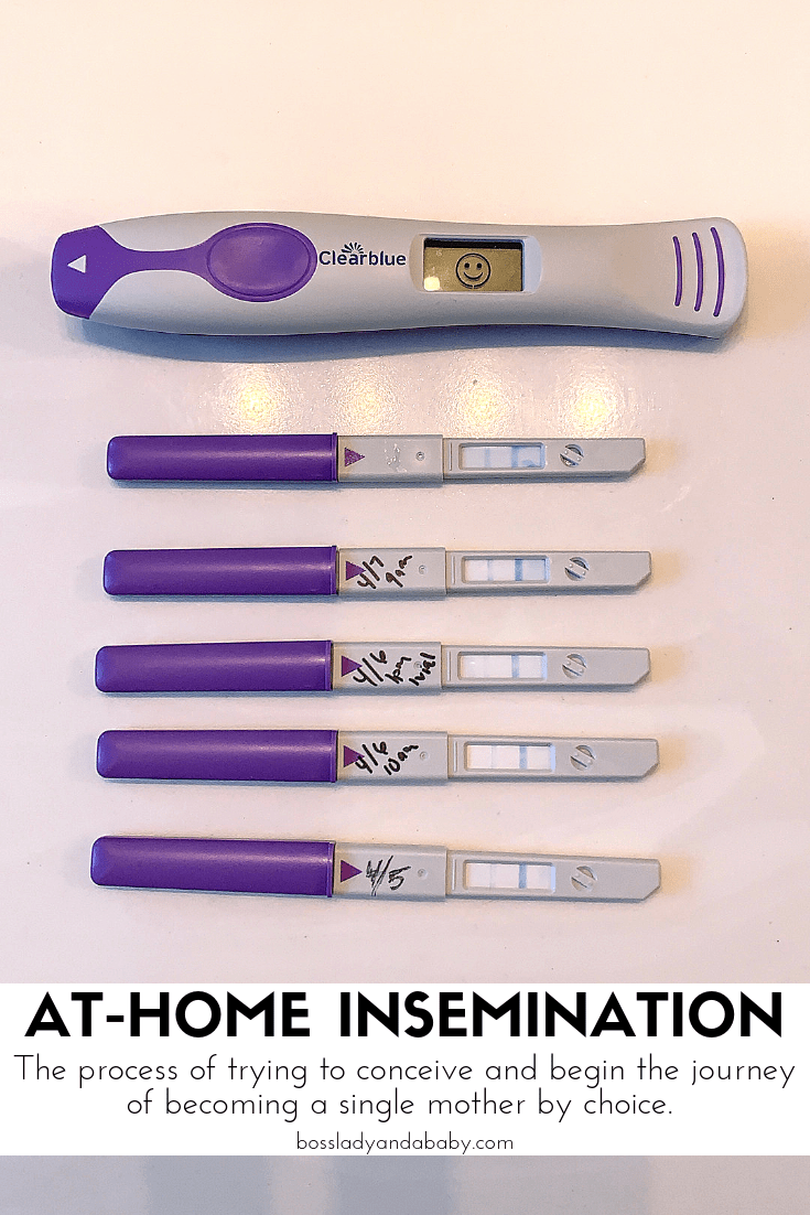 My At Home Insemination And First Attempt At Trying To Get Pregnant Starting My Journey As A Single Mother By Ch In 2020 Single And Pregnant Getting Pregnant Pregnant
