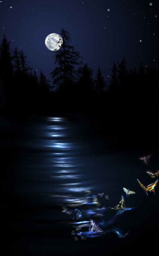 ef99233a74 ☆ Lake Light :¦: By Heather (Schumacher) Meuser ☆ | MAGICAL MOON ...