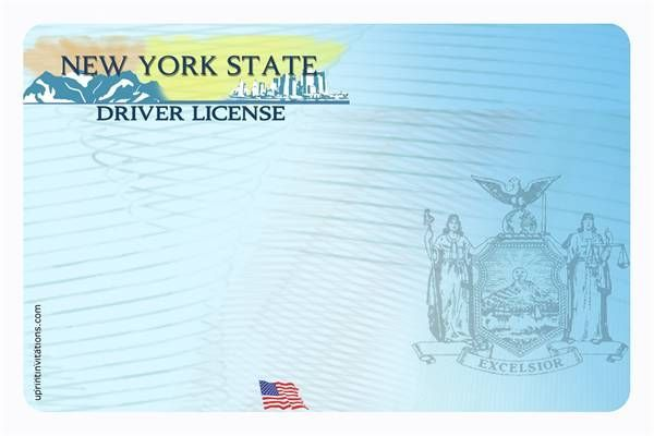 Drivers License Template Driver