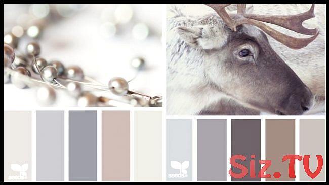 Welche Farbe für Küche farbpaletteneutralefarbengrau
