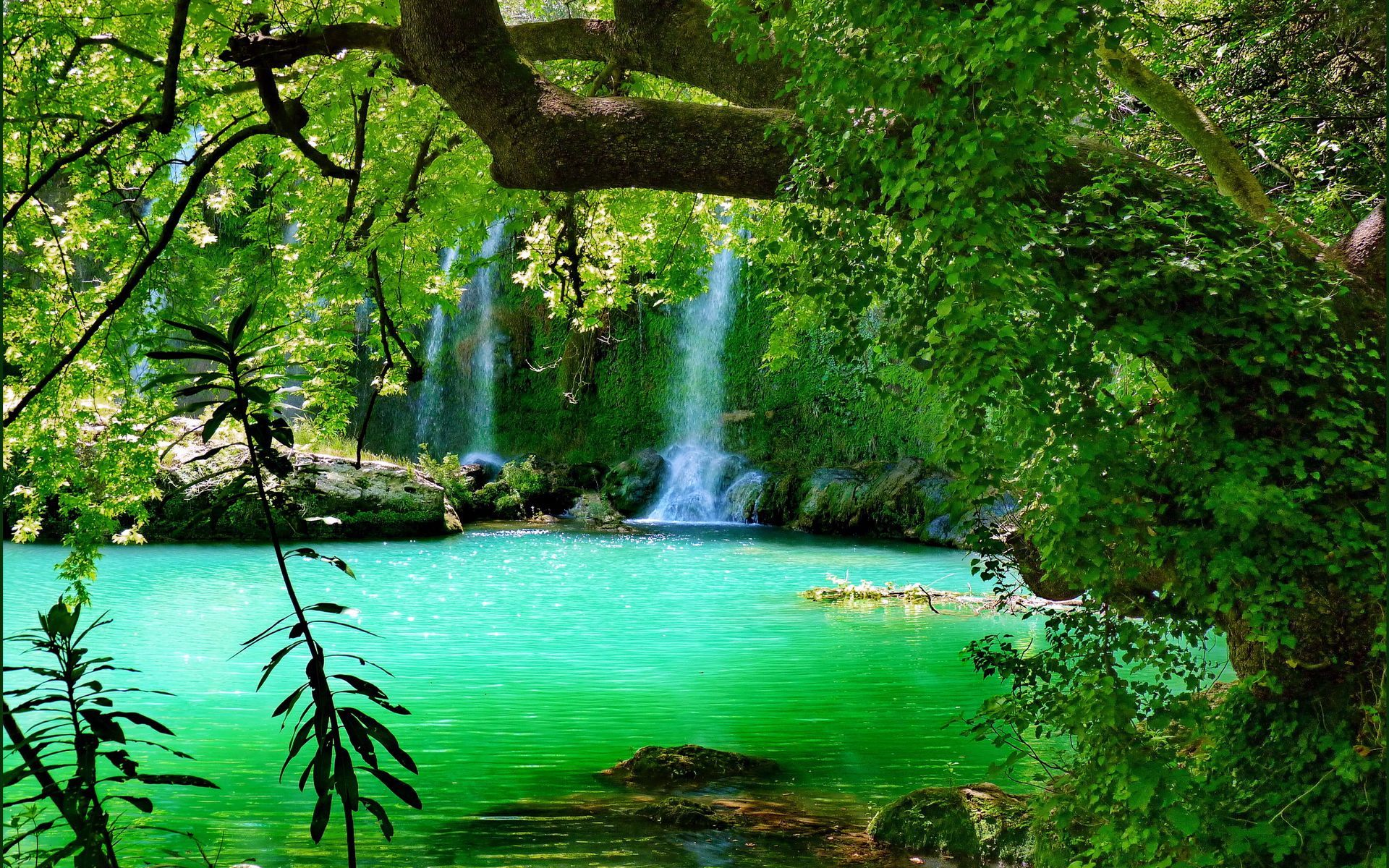 Forest Waterfall Background With Images Waterfall Forest