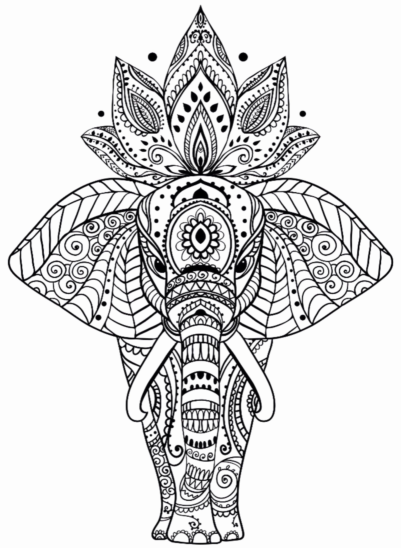 Elefant Mandala Malvorlagen Awesome Animal Mandala ...