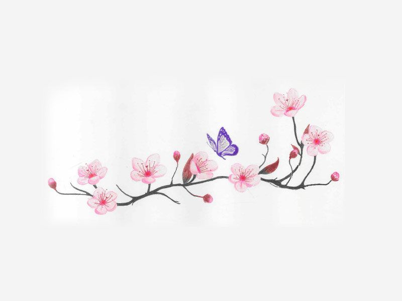 cherry_blossom_and_spring_time_with_flying_butterfly ...