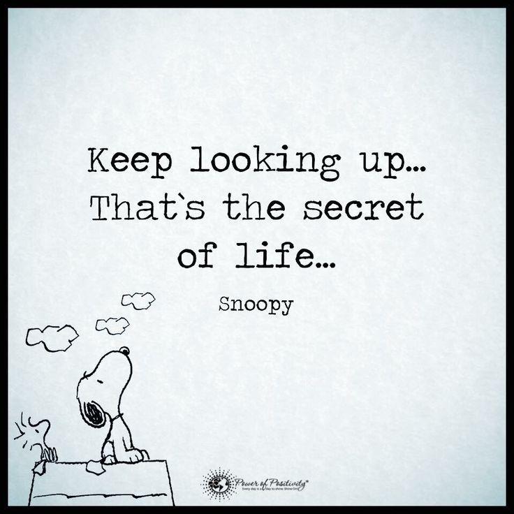 Keep looking up...: