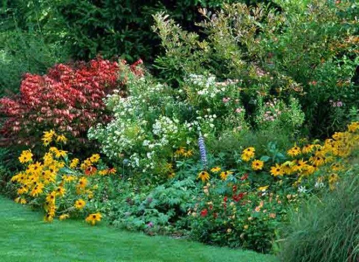 conseils pour concevoir et faire durer un massif fleuri jardinage rustica pinterest. Black Bedroom Furniture Sets. Home Design Ideas