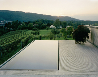 Infinity Pool, so good | the dry oyster gets dirty planting in the ...