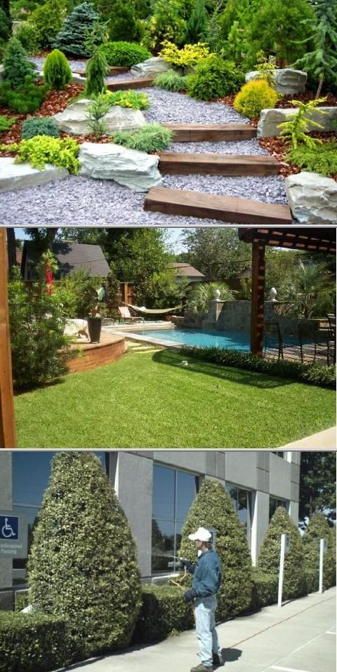 This Licensed Landscaping Company Offers Complete Lawn Care