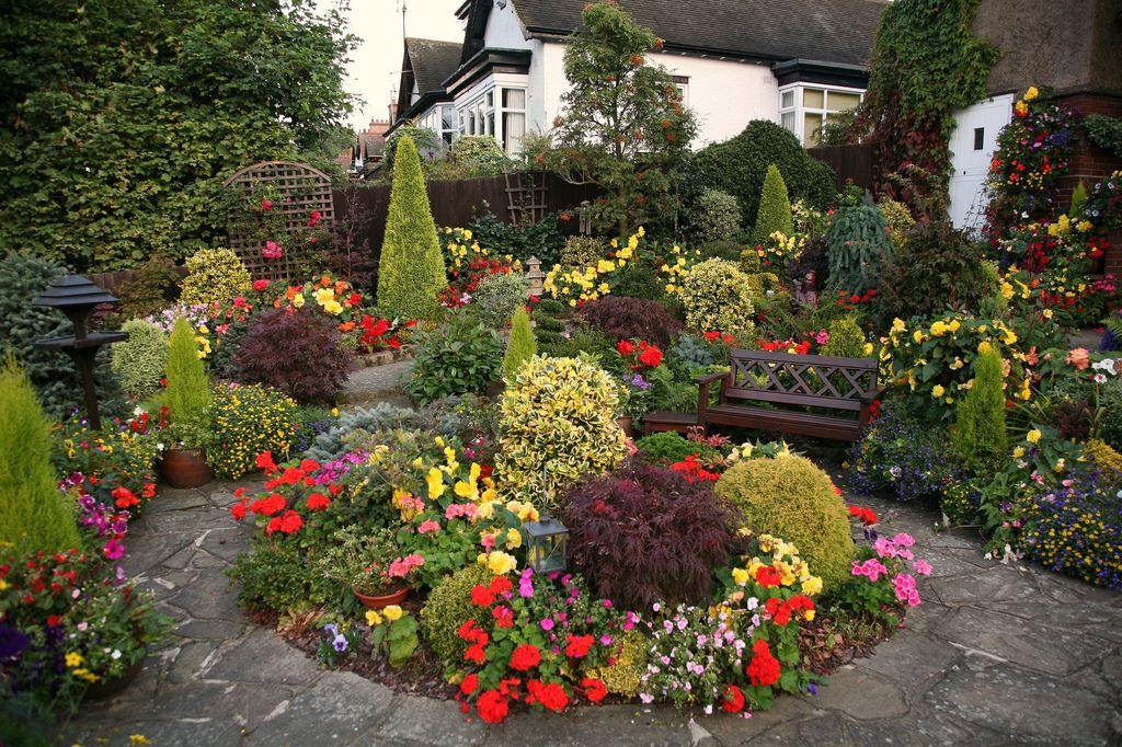 Krásna-anglický-záhradné-14