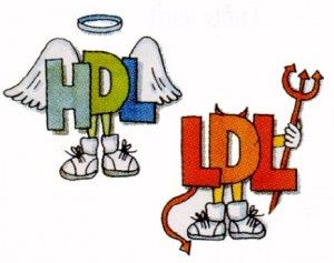 Image result for Lowers LDL Cholesterol cartoon