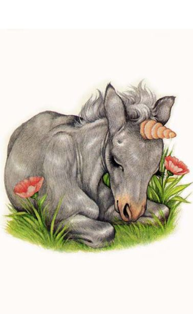 Grey-sleeping by Robin James