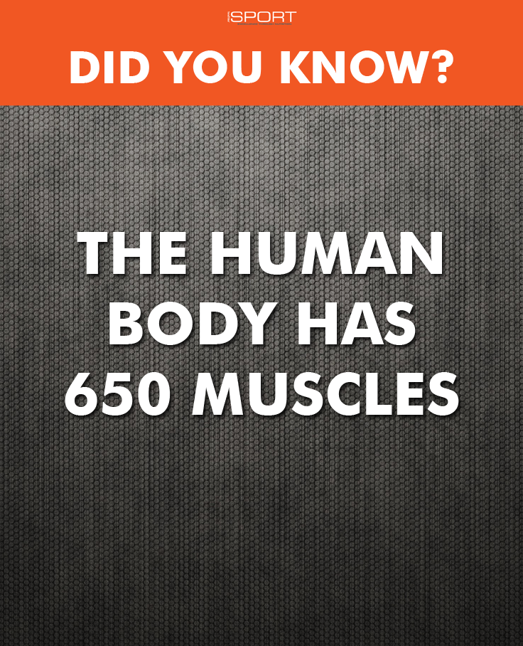 Work those muscles! #Health #Fitness