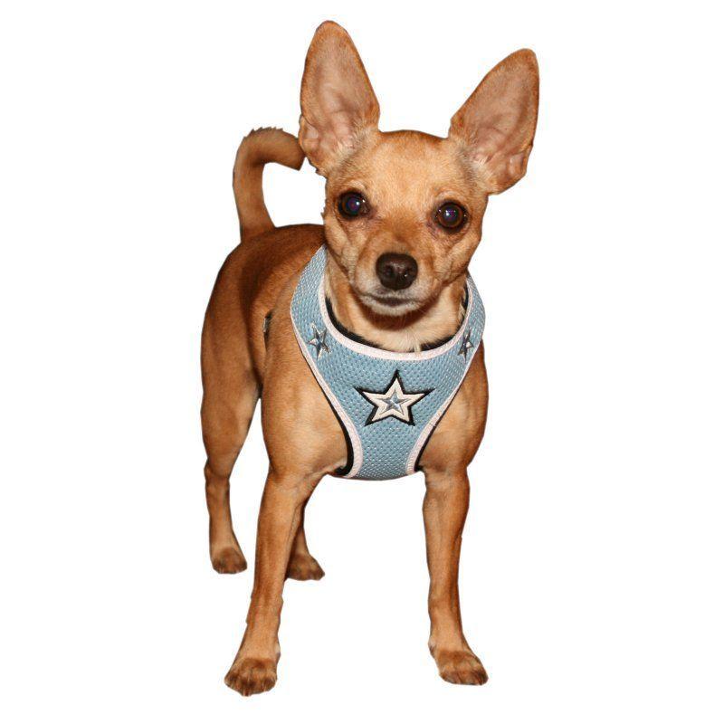 Hip Doggie Blue Super Star Mesh Harness Vest Hd 6bmst Xs Dog