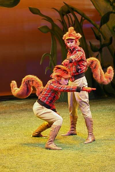 A Year With Frog And Toad Musical Google Search Toad Costume