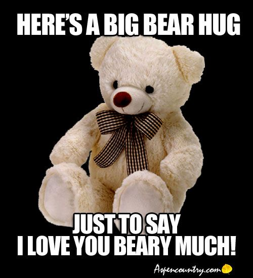 Beary Good Thoughts And Wise Words From Teddy Bears Motivational Quotes Inspirational Bear Memes Pg 5 Bear Meme Teddy Bear Bear