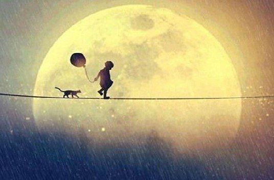 То, чего не можешь заполучить, всегда кажется лучше того, что имеешь. В этом и состоит романтика и идиотизм человеческой жизни.
