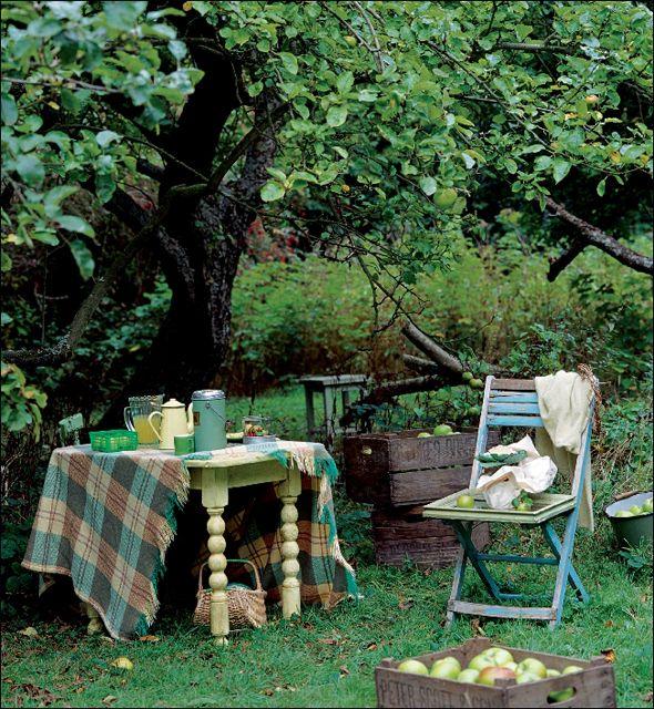 Shabby Style Im Garten sitzplatz unter einem baum kleingarten und garten garden