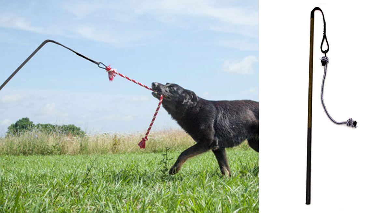 BIG Tether Tug (70 lb.+)   Outdoor dog toys, Outdoor dog