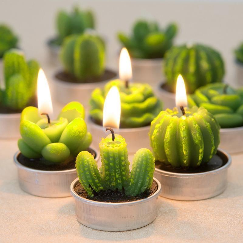 12Pcs Cactus Aroma Candle