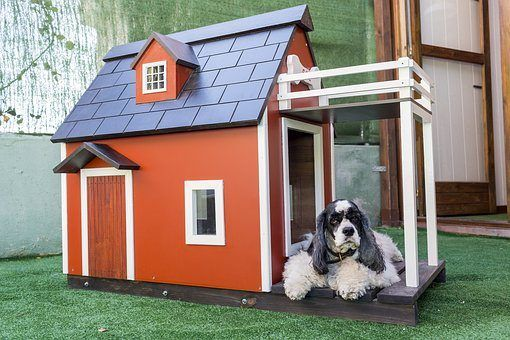 Outdoor Dog Kennels Dog House Plans Build A Dog House Large