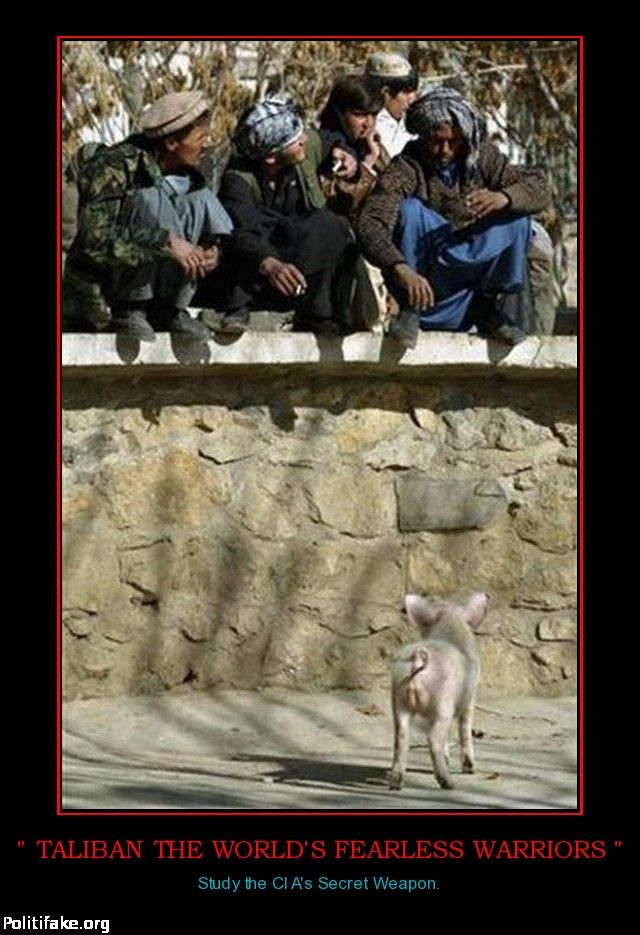 OBAMA CARTOONS: Conservative Political Humor: The Taliban: FEARLESS WARRIORS