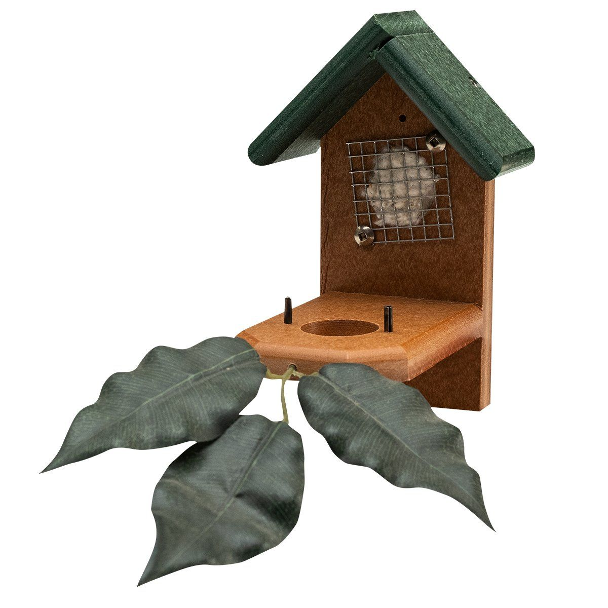 Hummingbird Nest House in 2020 Hummingbird nests