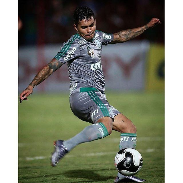 Dudu - Palmeiras - ESPN.com.br