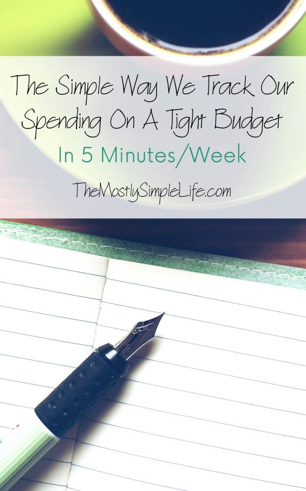 The Simple Way We Track Our Spending On a Tight Budget Pinterest
