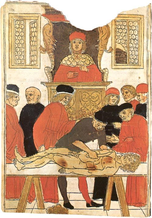 "Fasciculus Medicinae is a ""bundle"" of six independent and quite different medieval medical treatises. The collection, which existed only in two manuscripts (handwritten copies), was first printed in 1491 in Latin and came out in numerous editions over the next 25 years. Johannes de Ketham, the German physician routinely associated with the Fasciculus, was neither the author nor even the original compiler but merely an owner of one of the manuscripts"