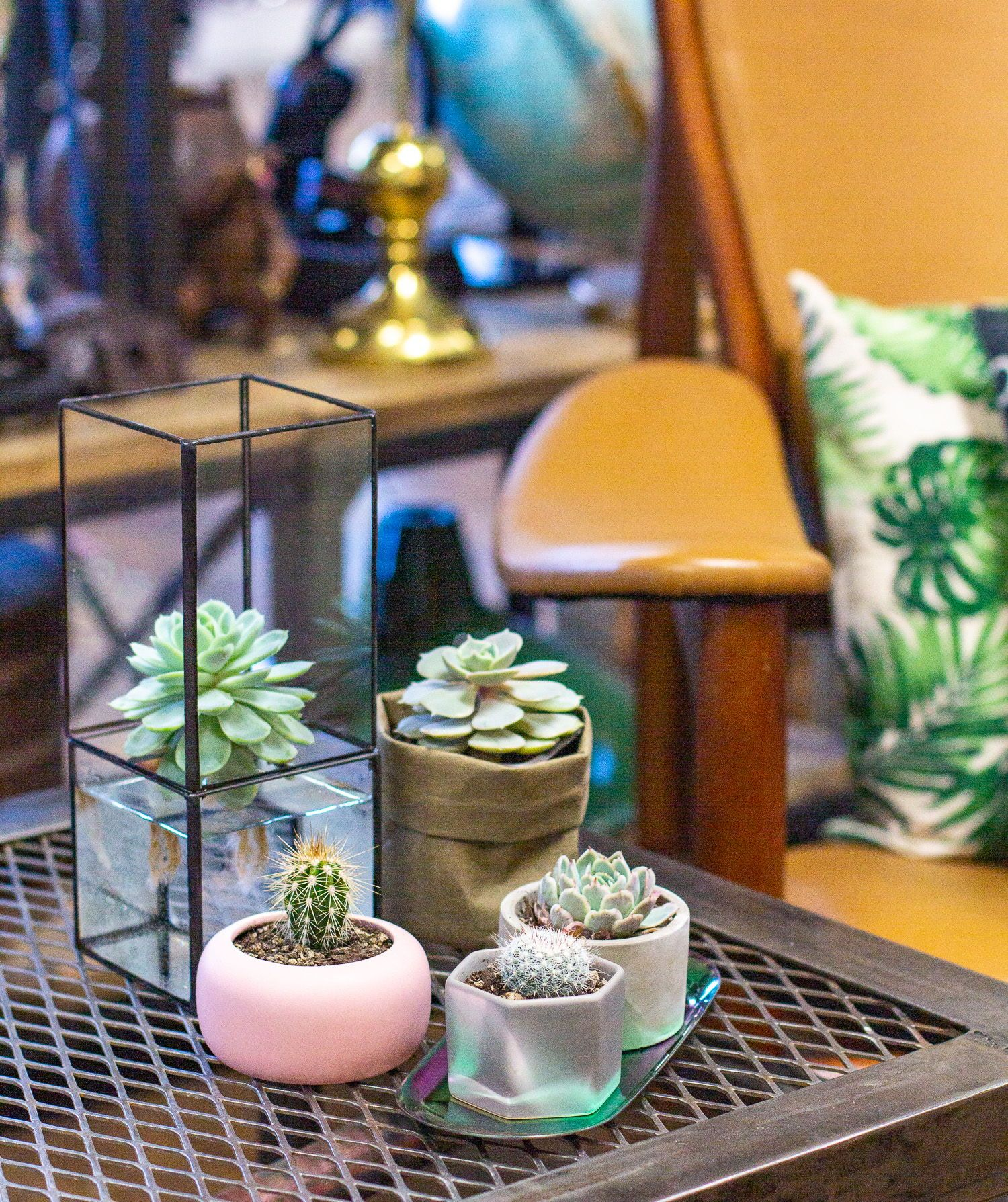 The Succulent Supply Company Weve carefully curated a selection of gorgeous plant pots and stylish propagation stations so that no matter your home decor or which pots yo...