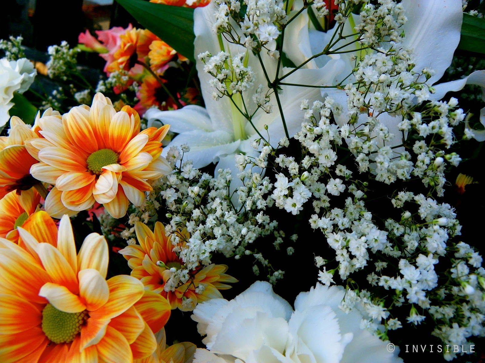 Invisible SLG Photos: Flores día de Todos los Santos