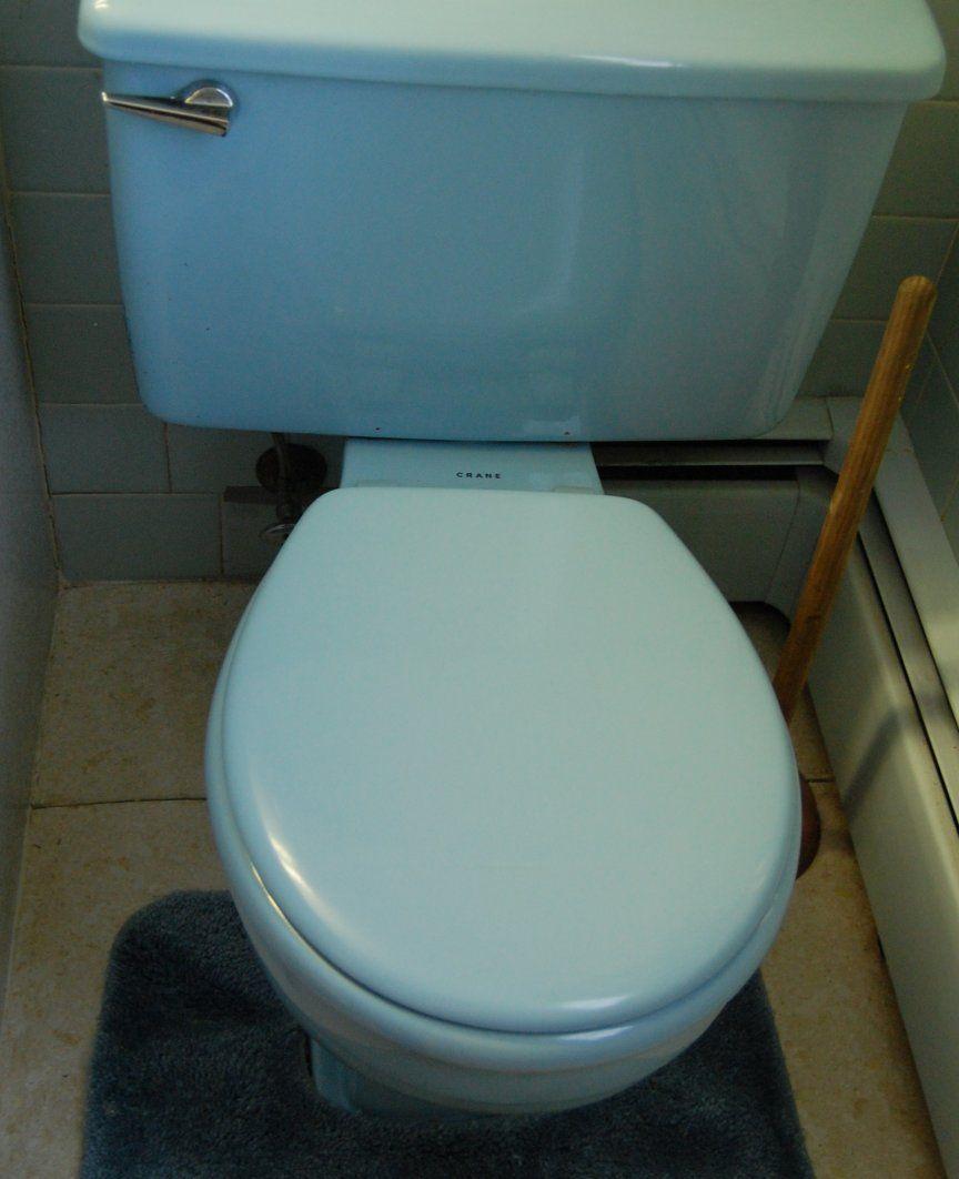 Scenes From 22 Blue Midcentury Bathrooms Vintage Bathroom Toilets For Sale Tile Floor