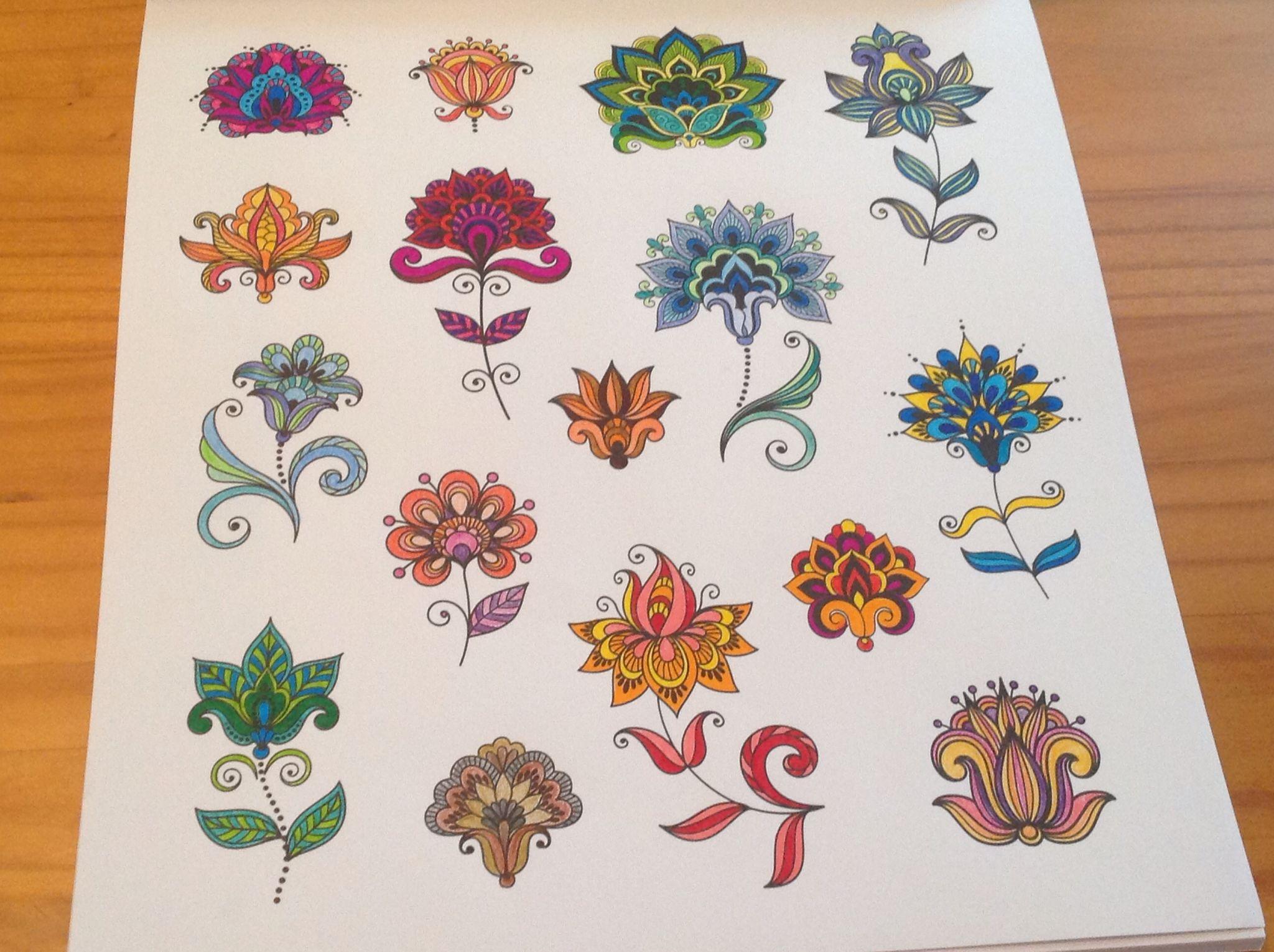 Allerlei Bloemen Met Stift Kleurboek Kleurplaten Kleurplaten Voor Volwassenen