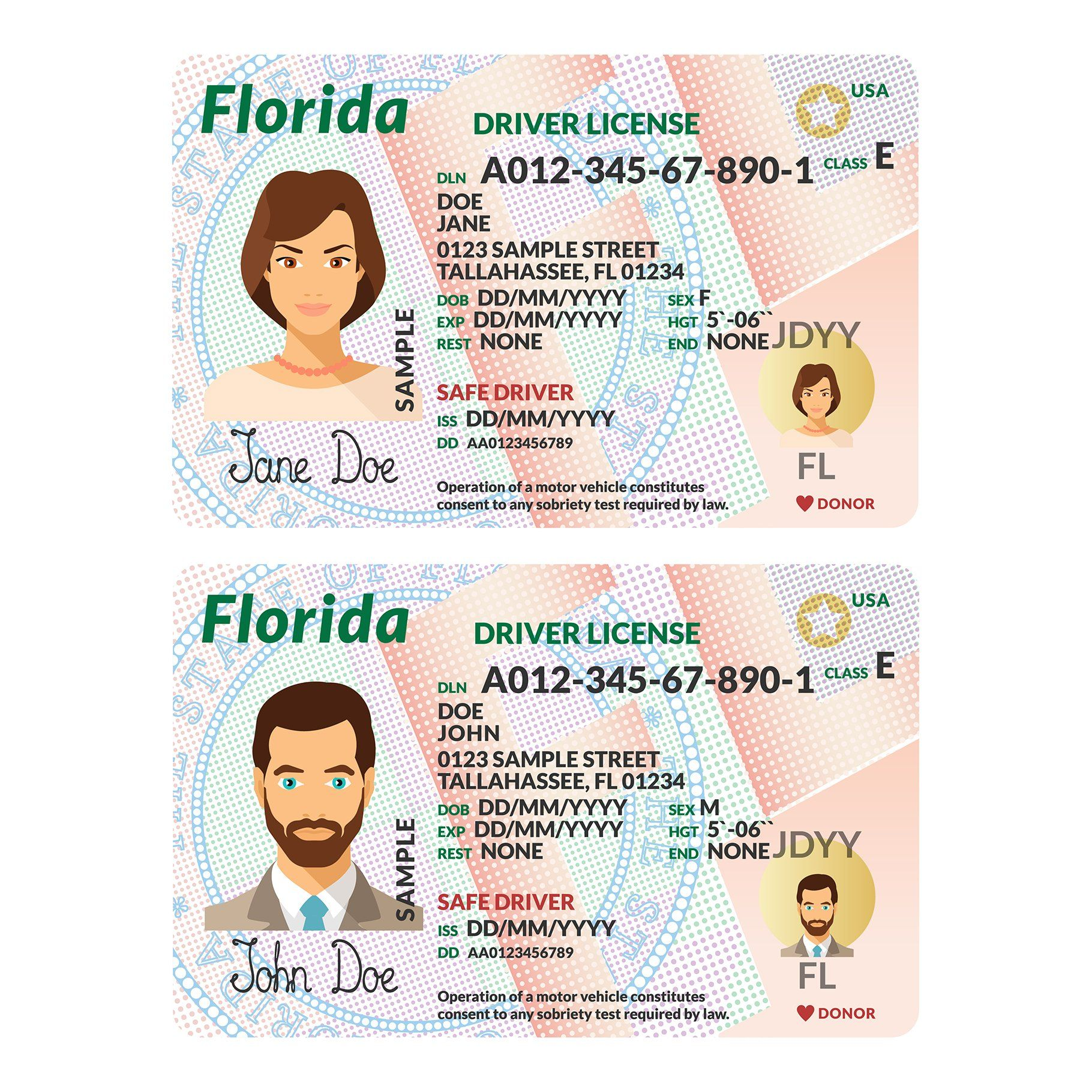 Template Of Driver Card Florida By Alex Oakenman On Creativemarket Driver Card Templates Florida