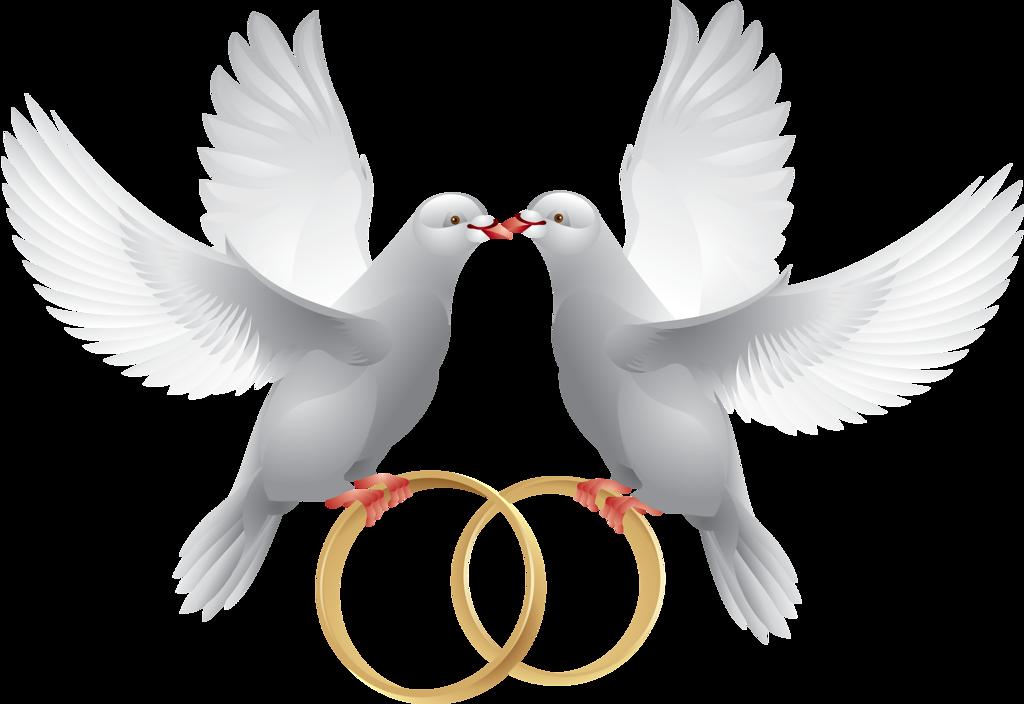 Очень красивые, свадебные картинки с голубями и кольцами