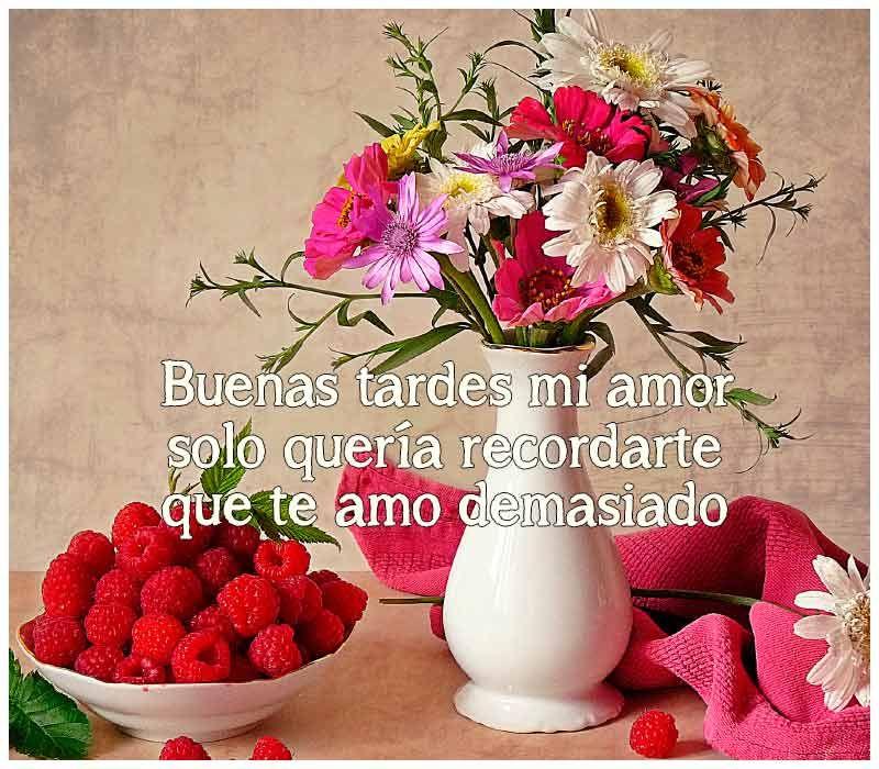 Imagenes De Buenas Tardes Amor Buenas Tardes Mi Amor