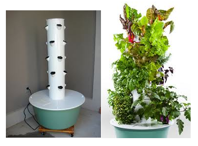 17 Best 1000 images about non circulating hydroponics on Pinterest