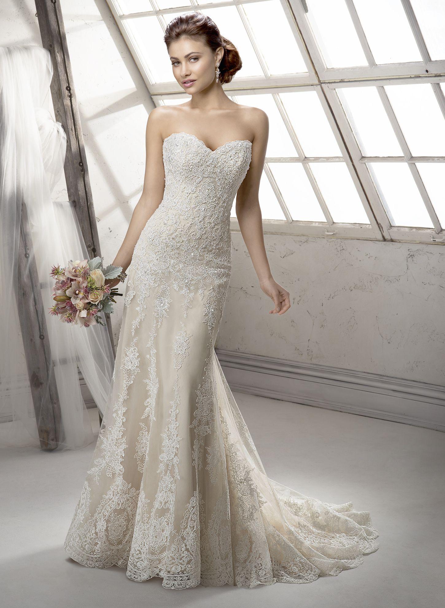 Maggie Sottero Wedding Dresses   Maggie sottero, Sottero midgley and ...