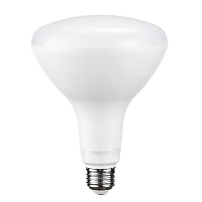 Torchstar 100 Watt Equivalent Br40 Led Dimmable Light Bulb Warm White 3000k E26 Medium Standard Base In 2020 Light Bulb Dimmable Led Lights Dimmable Light Bulbs