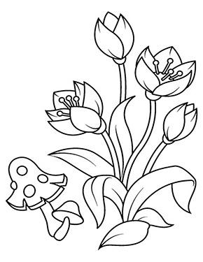 Ausmalbild Blumen Und Ein Pilz Malvorlagen Blumen Blumen Ausmalbilder Blumenzeichnung