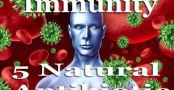 5 Powerful Natural Antibiotics
