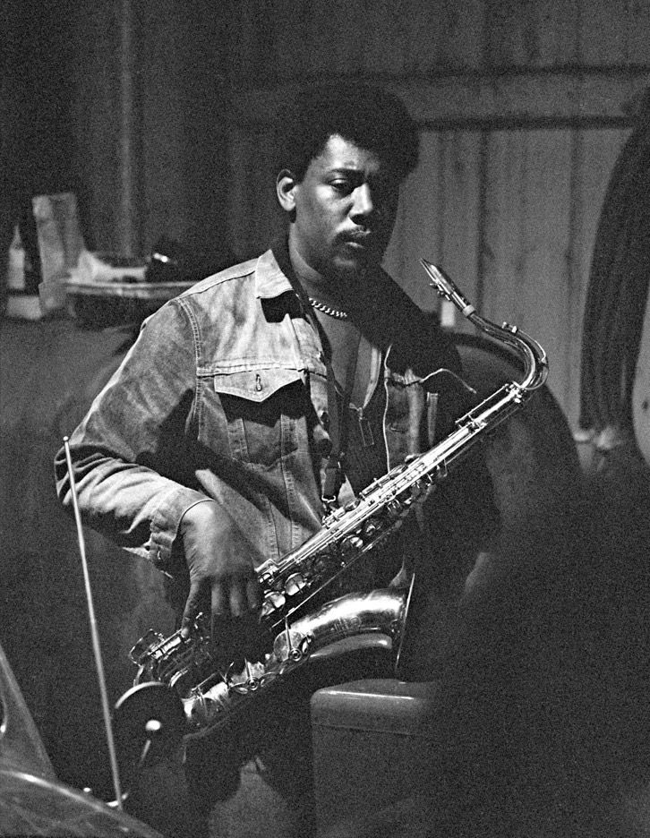 Pin by Paula Whitney on CLARENCE CLEMONS Bruce