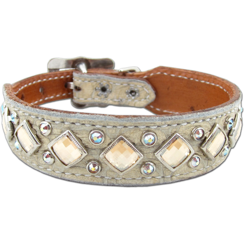 cream gator small dog collar