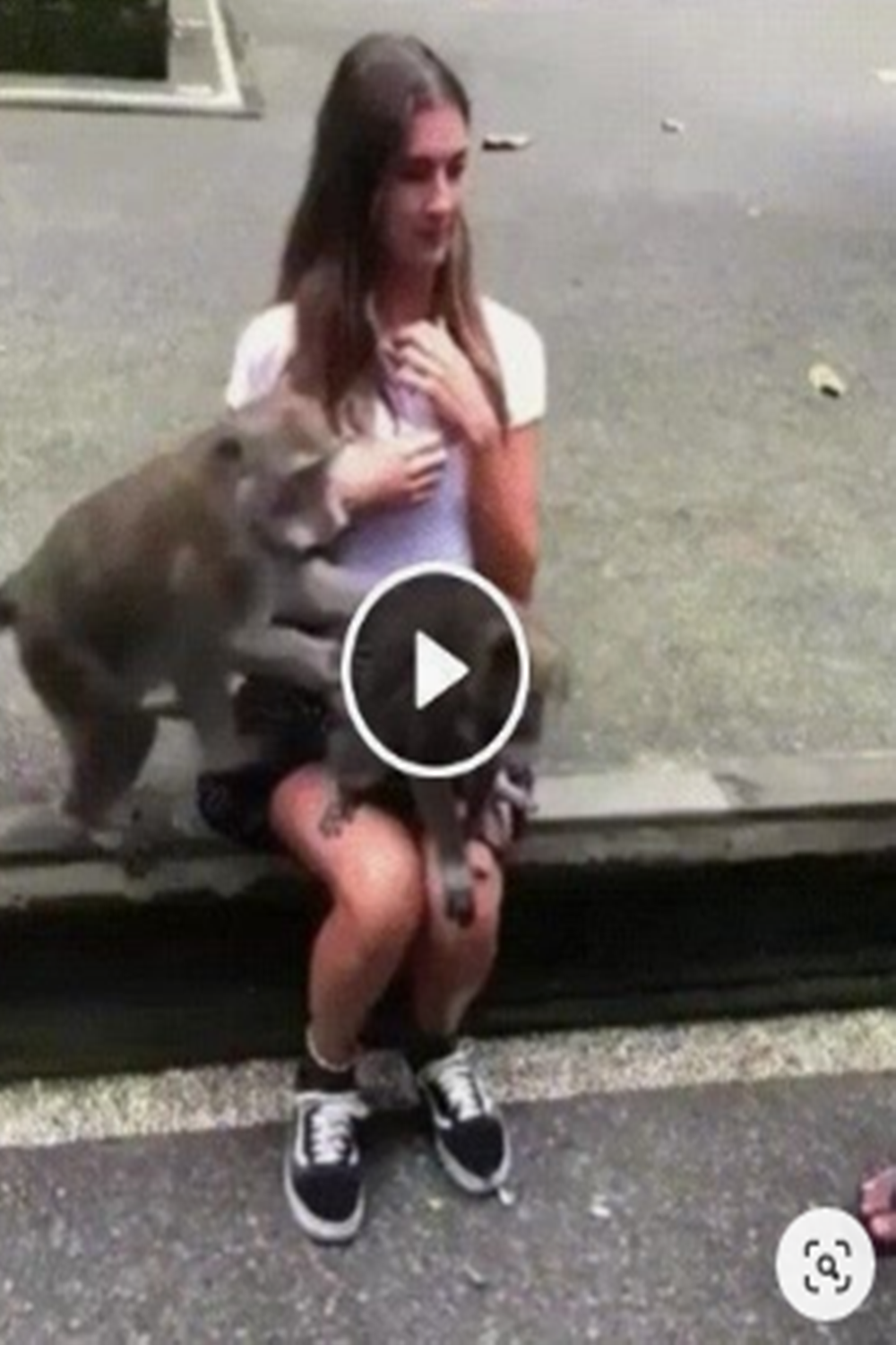 Are These The 15 Funniest GIFs All Time