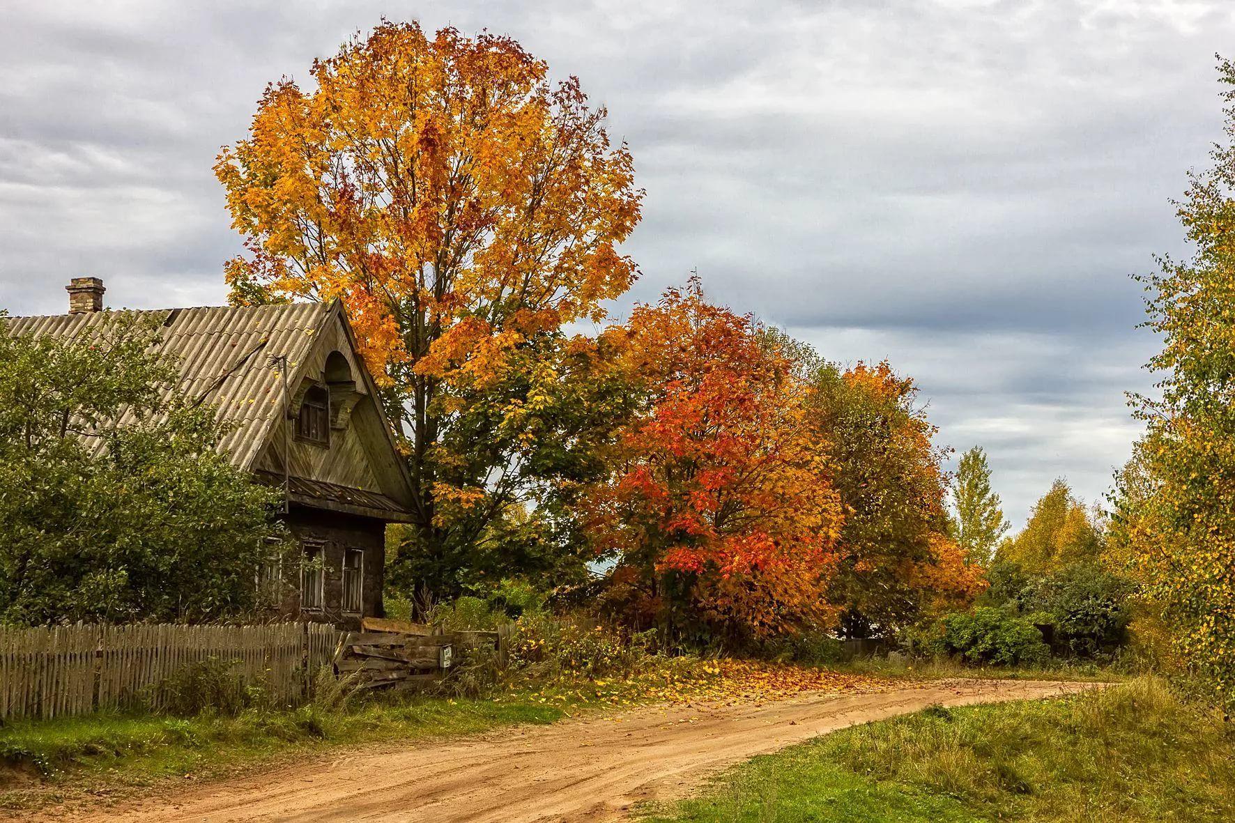 парфюм фотографии деревенской осени такой старомодный складной