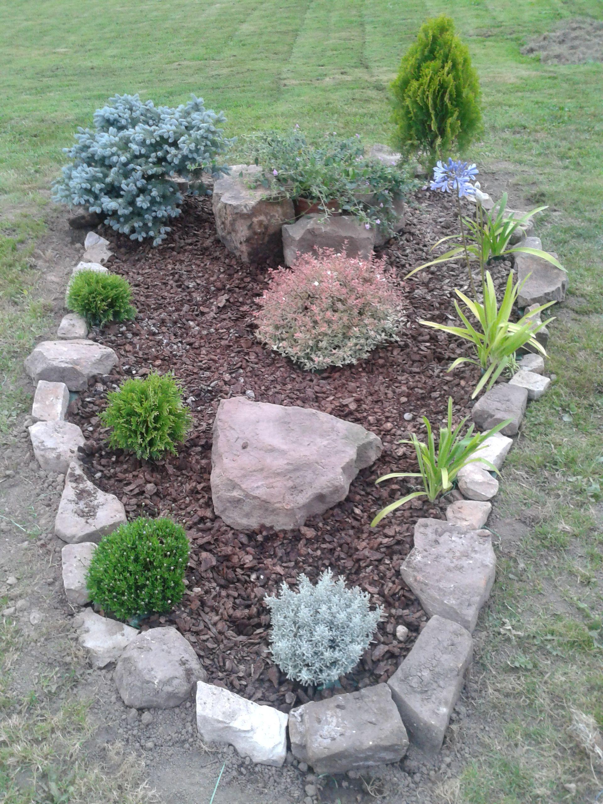 A adimos unas piedras y corteza de pino mi jard n - Jardines con cactus y piedras ...