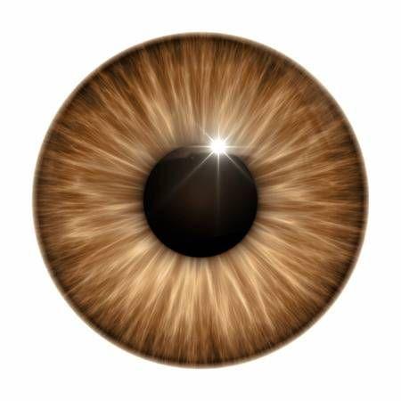 An Image Of A Nice Brown Eye Texture Eye Texture Eye Illustration Eye Art