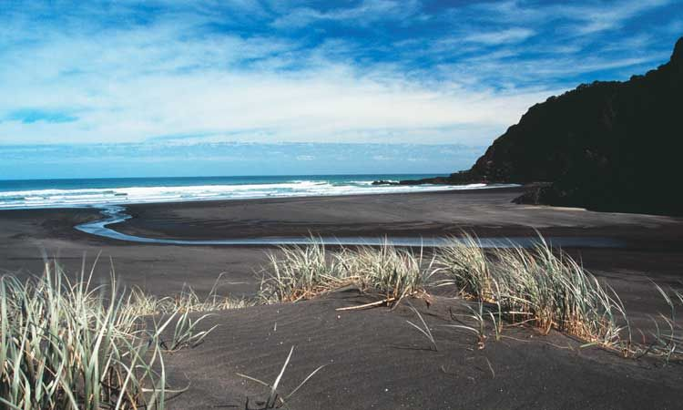 Black sand beaches new zealand favorite places for Black sand beaches costa rica