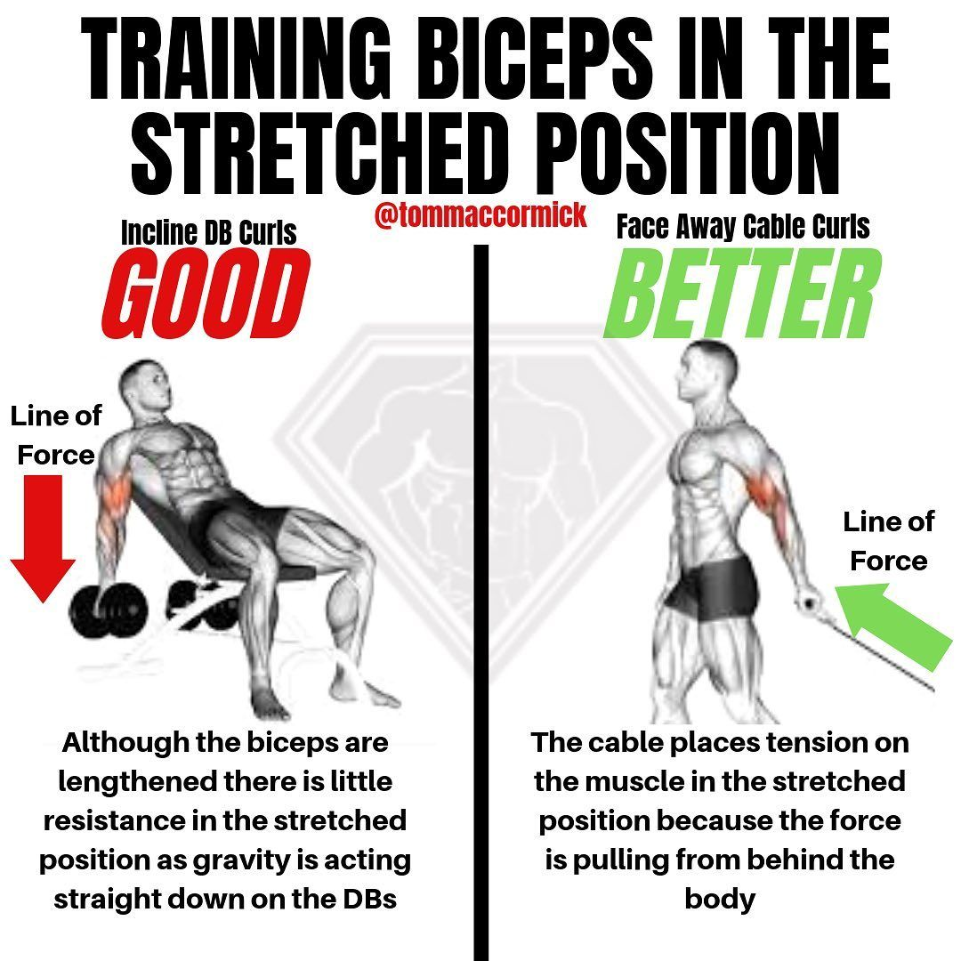 5 biceps tips that build size no matter your level of