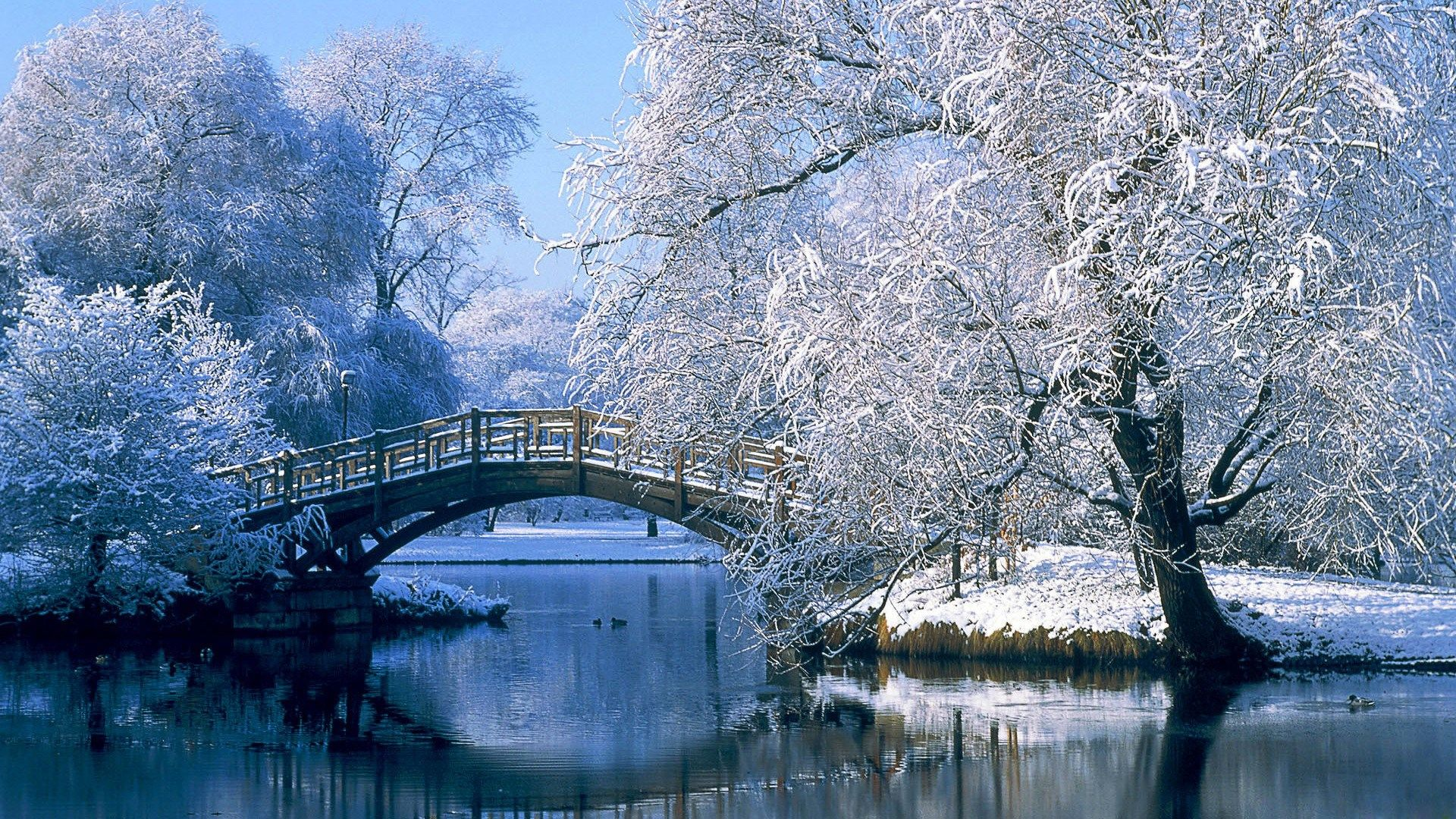 Desktop Backgrounds For Computer Full Hd 1080p Winter Scenery Winter Landscape Winter Wallpaper