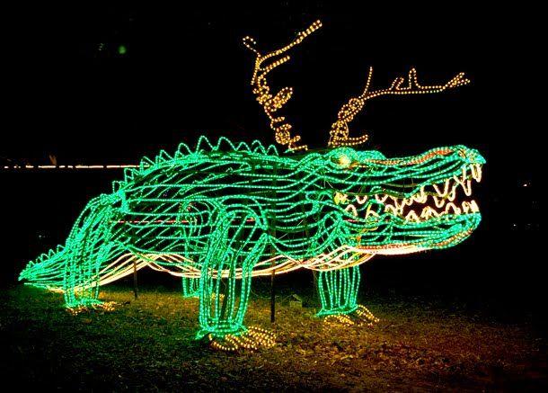alligator christmas lights